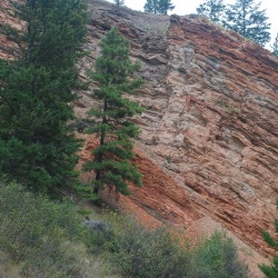 Red Bluffs on KVR