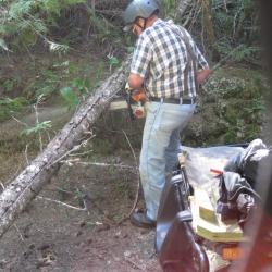 Ray Johnson, almost 80 and still logging