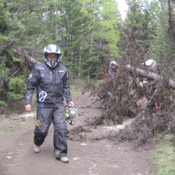 Ron logging again